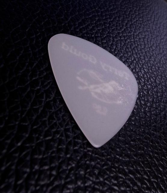 Guitar Pic9